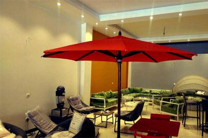 Umbrella-and-canopy